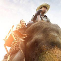Elephant Ride (1)