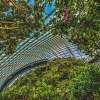 싱가폴 가든스바이더베이-4