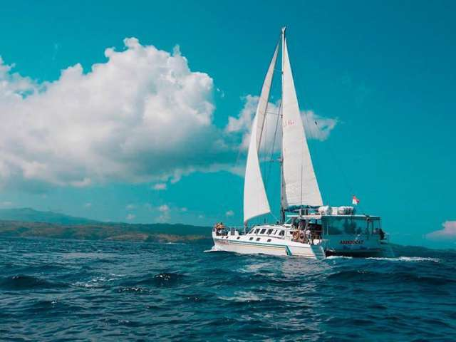 Castaway Escape by Bali Hai Cruises with Diving Experience 3